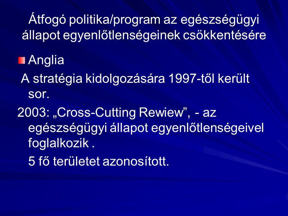 """Átfogó politika/program az egészségügyi állapot egyenlőtlenségeinek csökkentésére Anglia A stratégia kidolgozására 1997-től került sor. 2003: """"Cross-C"""