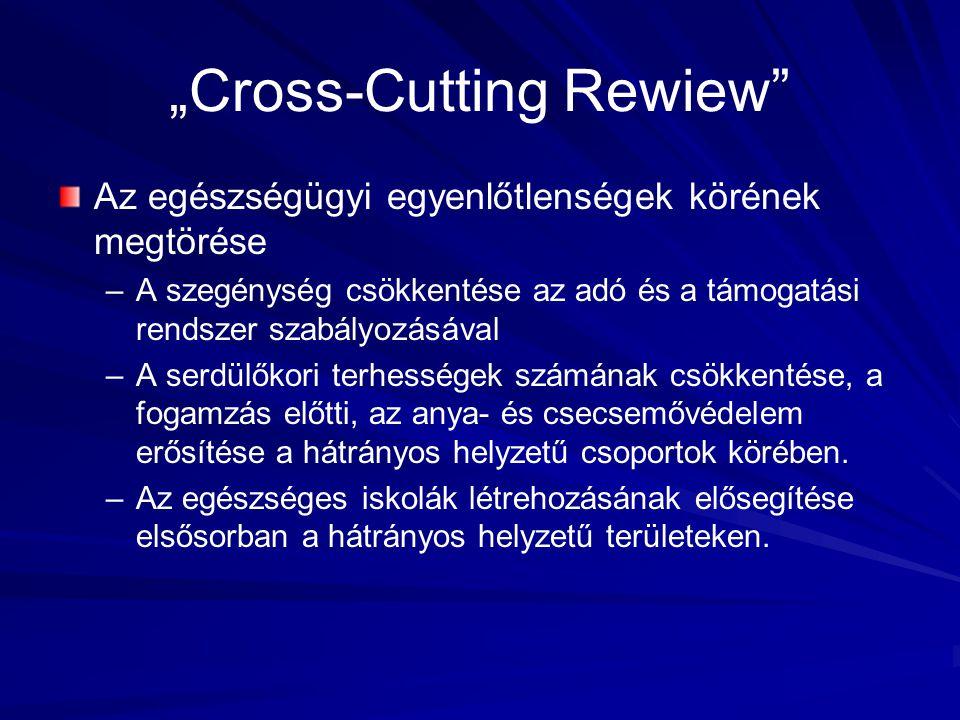 """""""Cross-Cutting Rewiew"""" Az egészségügyi egyenlőtlenségek körének megtörése – –A szegénység csökkentése az adó és a támogatási rendszer szabályozásával"""