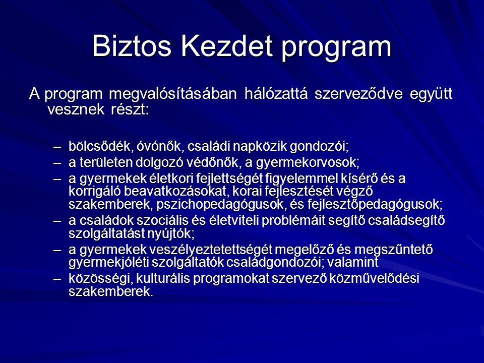 Biztos Kezdet program A program megvalósításában hálózattá szerveződve együtt vesznek részt: –bölcsődék, óvónők, családi napközik gondozói; –a terület