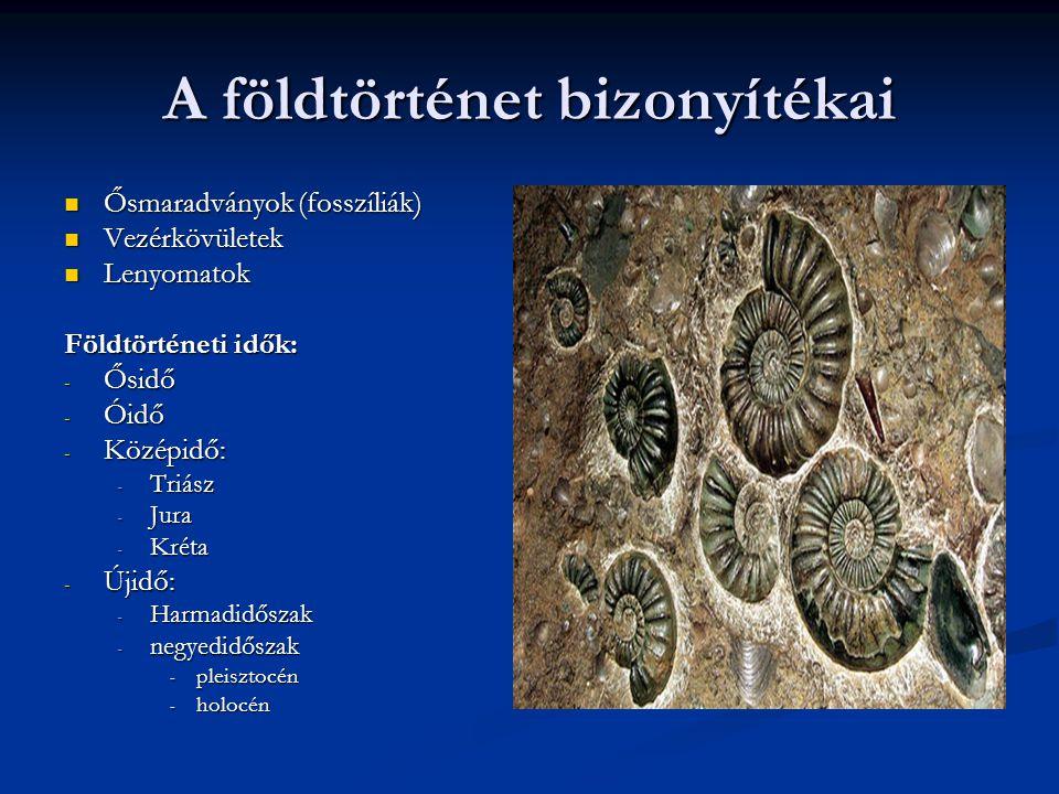 A földtörténet bizonyítékai Ősmaradványok (fosszíliák) Ősmaradványok (fosszíliák) Vezérkövületek Vezérkövületek Lenyomatok Lenyomatok Földtörténeti id