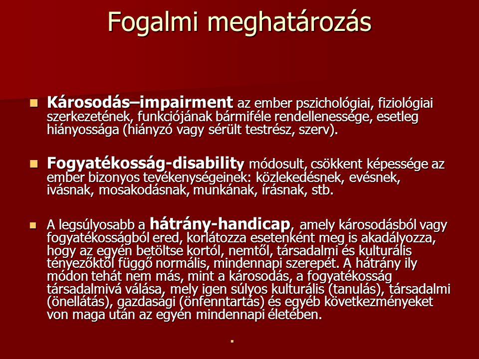 Fogalmi meghatározás Károsodás–impairment az ember pszichológiai, fiziológiai szerkezetének, funkciójának bármiféle rendellenessége, esetleg hiányossá