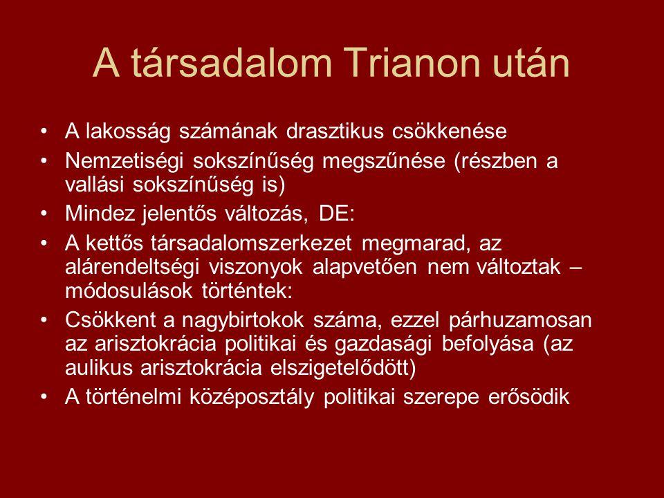 A társadalom Trianon után A lakosság számának drasztikus csökkenése Nemzetiségi sokszínűség megszűnése (részben a vallási sokszínűség is) Mindez jelen