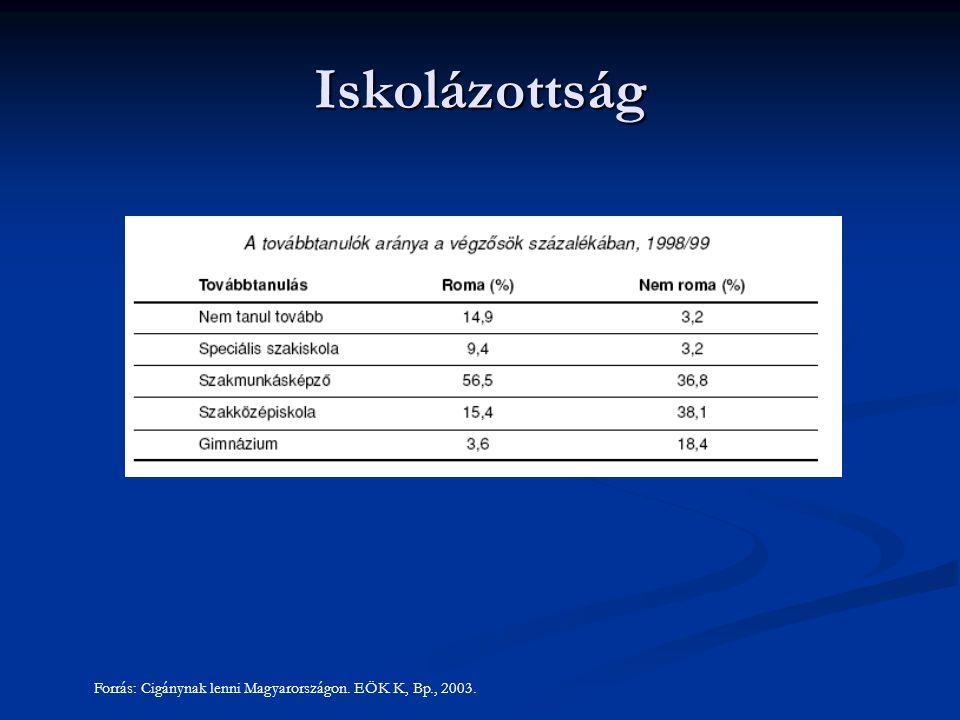 Forrás: Cigánynak lenni Magyarországon. EÖK K, Bp., 2003. Iskolázottság