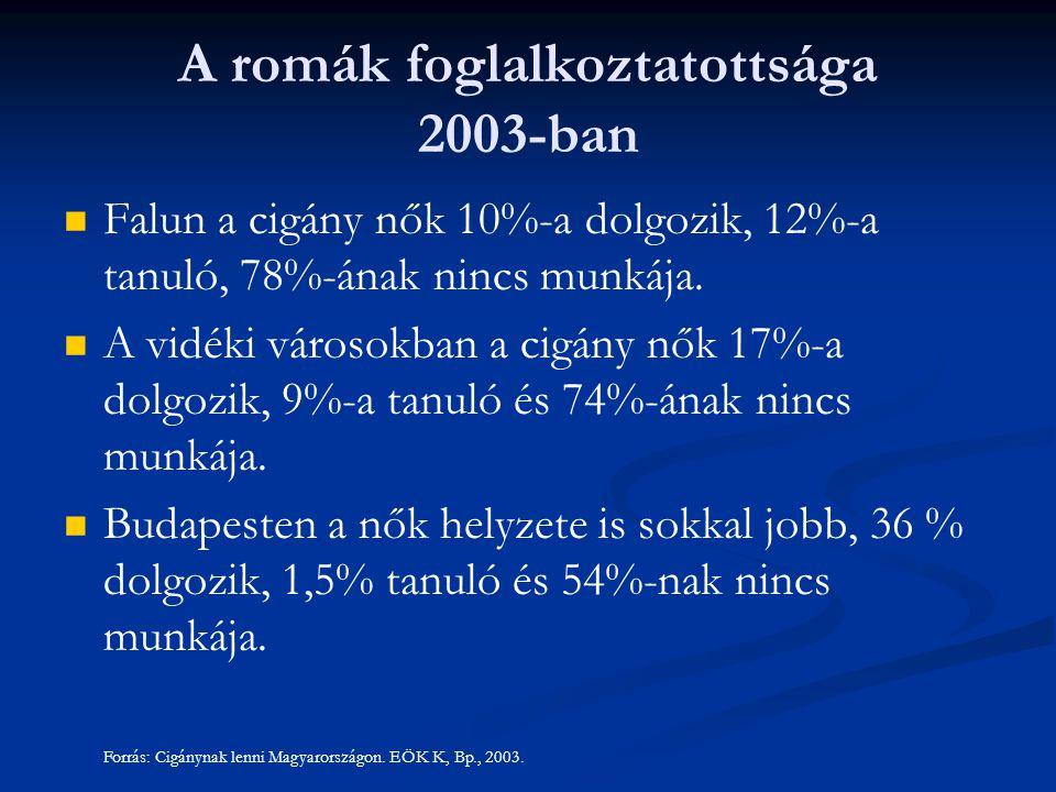 Falun a cigány nők 10%-a dolgozik, 12%-a tanuló, 78%-ának nincs munkája.