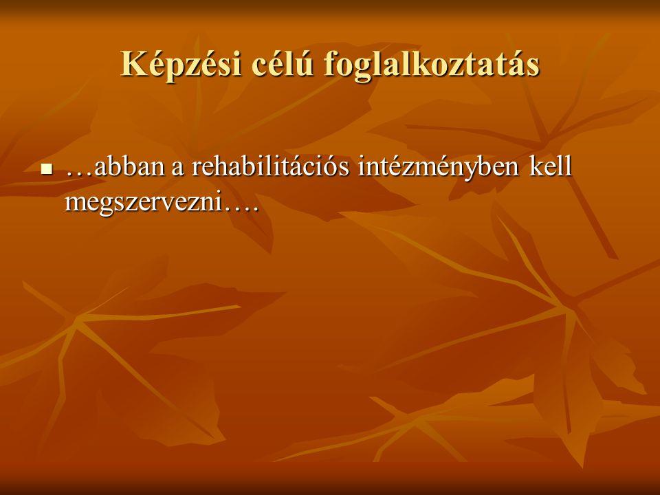 Képzési célú foglalkoztatás …abban a rehabilitációs intézményben kell megszervezni…. …abban a rehabilitációs intézményben kell megszervezni….