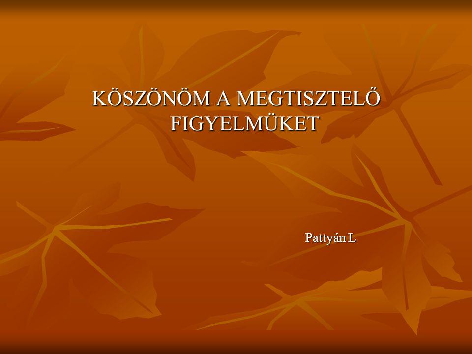 KÖSZÖNÖM A MEGTISZTELŐ FIGYELMÜKET Pattyán L