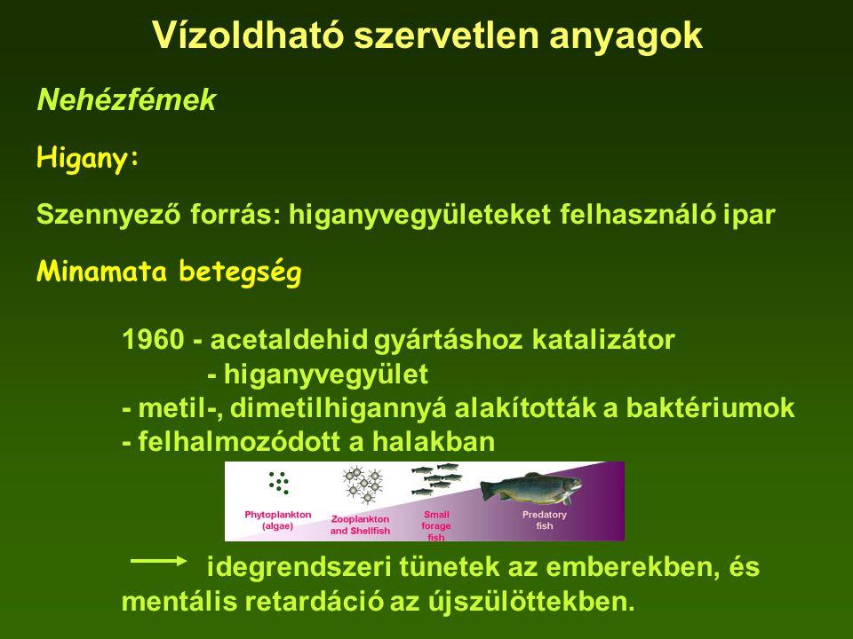 Vízoldható szervetlen anyagok Nehézfémek Higany: Szennyező forrás: higanyvegyületeket felhasználó ipar Minamata betegség 1960 - acetaldehid gyártáshoz