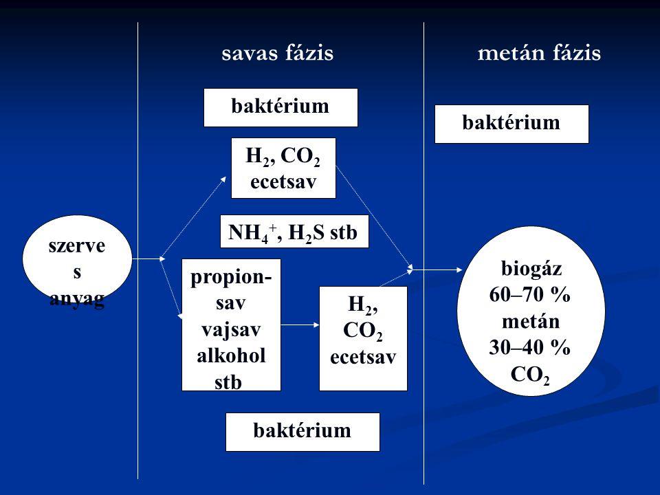 savas fázis metán fázis szerve s anyag H 2, CO 2 ecetsav baktérium NH 4 +, H 2 S stb. propion- sav vajsav alkohol stb. H 2, CO 2 ecetsav biogáz 60–70