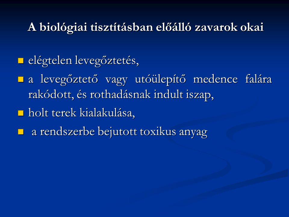 A biológiai tisztításban előálló zavarok okai elégtelen levegőztetés, elégtelen levegőztetés, a levegőztető vagy utóülepítő medence falára rakódott, é