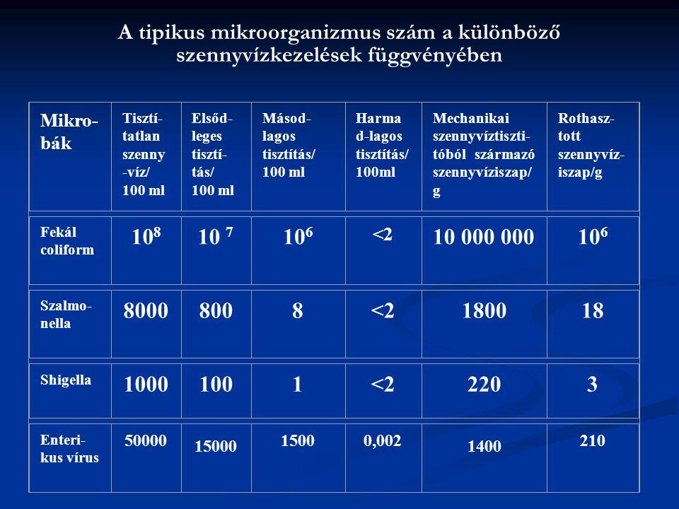 A tipikus mikroorganizmus szám a különböző szennyvízkezelések függvényében Mikro- bák Tisztí- tatlan szenny -víz/ 100 ml Elsőd- leges tisztí- tás/ 100