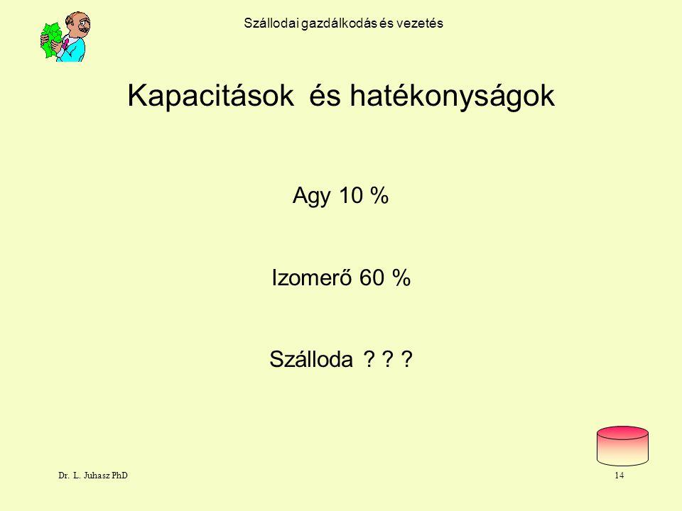 Dr. L. Juhasz PhD13 eladott szoba 100% Szállodai gazdálkodás és vezetés Szállás tevékenység maximális bevétele Hipotézis Rack Rate 115 EU szobaár bevé