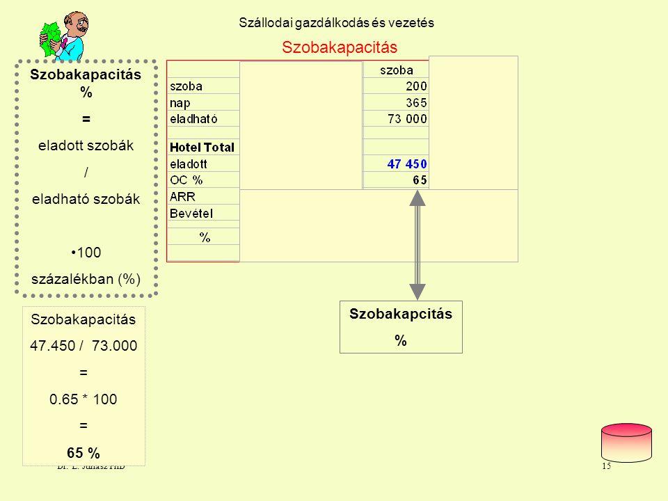 Dr. L. Juhasz PhD14 Szállodai gazdálkodás és vezetés Kapacitások és hatékonyságok Agy 10 % Izomerő 60 % Szálloda ? ? ?