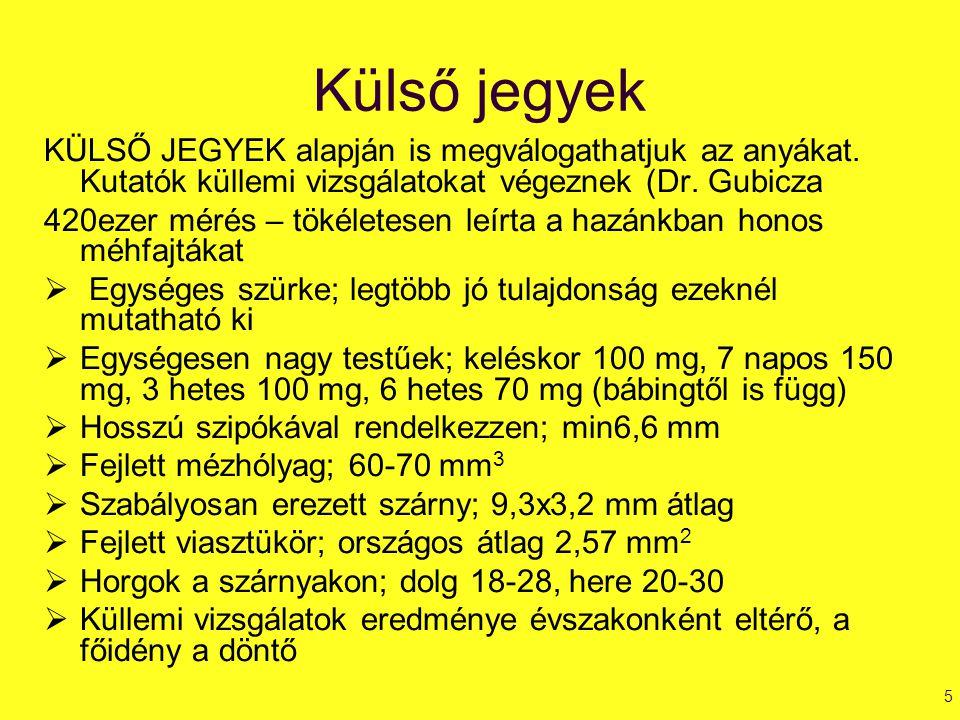TENYÉSZ ANYACSALÁD  Tenyész anya jótulajdonságokat örökíti (lehet 3 – 4 éves is)  Keretek elrendezése: MFF:pTá:FFV anya középen nyitott fias keretek között anyaráccsal korlátozva  Népesség: sok fiatal méh (0,5 kg bezsongatható)  Táplálás: serkentett állapot kell (3 dl/nap)  Tenyészlép: JENTER vagy bábinges lép álcás neveléskor, szűz lép petés neveléskor  Tenyészcsalád beüzemelés: anyát fél napra zárkázom (peték súlya növekszik = nagyobb petézőképességű anyák fejlődnek).
