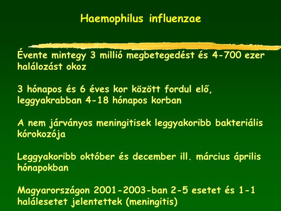 Haemophilus influenzae Évente mintegy 3 millió megbetegedést és 4-700 ezer halálozást okoz 3 hónapos és 6 éves kor között fordul elő, leggyakrabban 4-