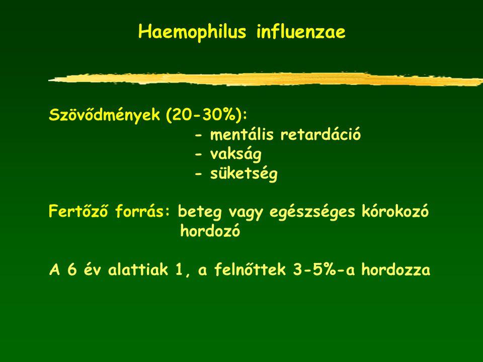 Haemophilus influenzae Szövődmények (20-30%): - mentális retardáció - vakság - süketség Fertőző forrás: beteg vagy egészséges kórokozó hordozó A 6 év