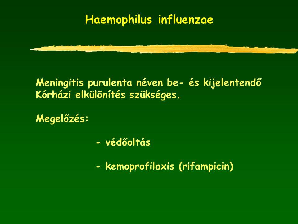 Haemophilus influenzae Meningitis purulenta néven be- és kijelentendő Kórházi elkülönítés szükséges. Megelőzés: - védőoltás - kemoprofilaxis (rifampic