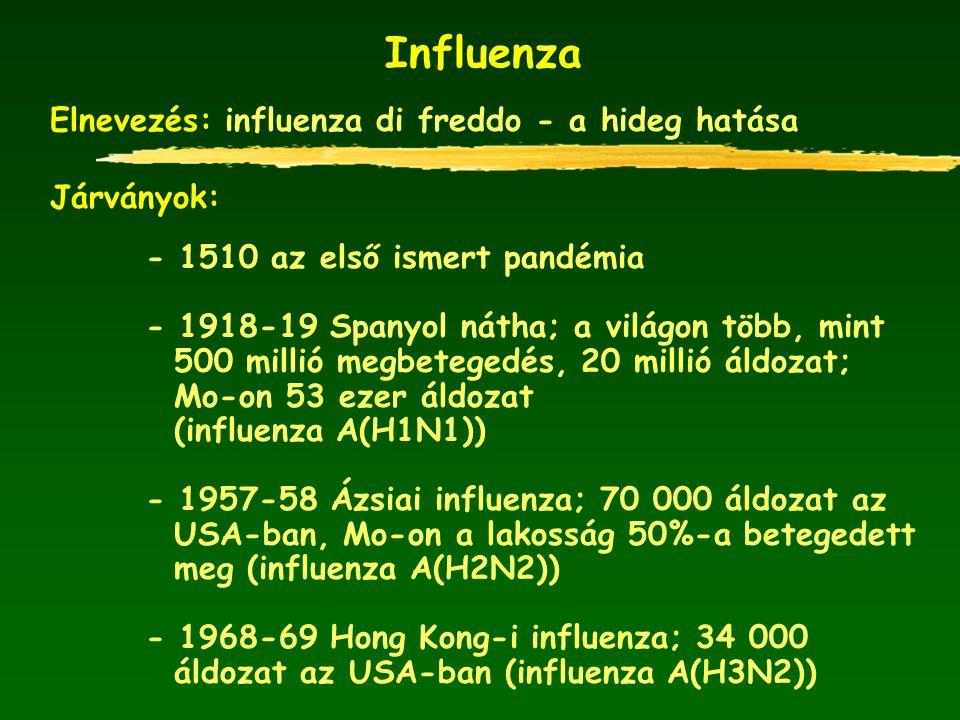 Influenza Elnevezés: influenza di freddo - a hideg hatása Járványok: - 1510 az első ismert pandémia - 1918-19 Spanyol nátha; a világon több, mint 500