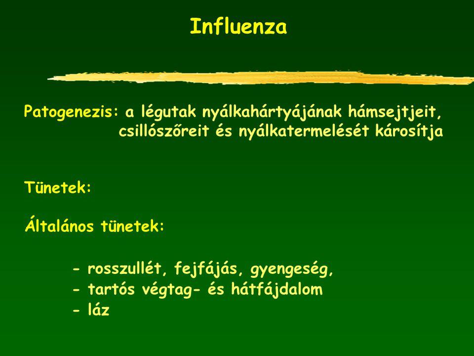 Influenza Patogenezis: a légutak nyálkahártyájának hámsejtjeit, csillószőreit és nyálkatermelését károsítja Tünetek: Általános tünetek: - rosszullét,