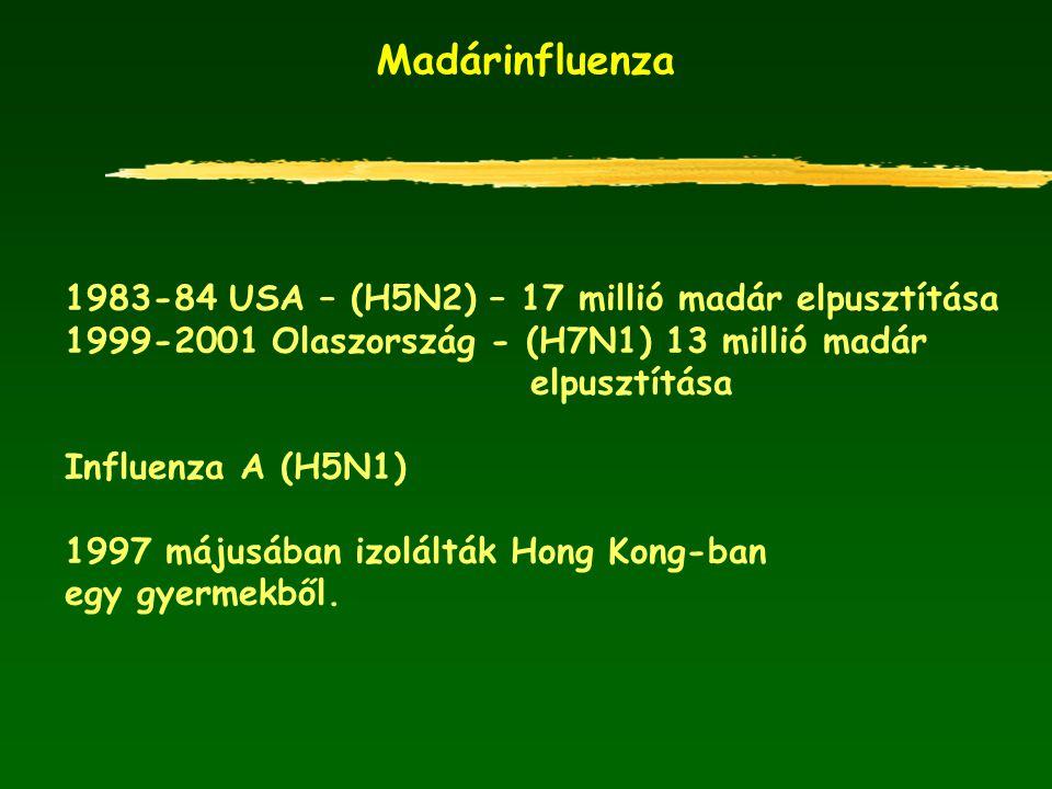 Madárinfluenza 1983-84 USA – (H5N2) – 17 millió madár elpusztítása 1999-2001 Olaszország - (H7N1) 13 millió madár elpusztítása Influenza A (H5N1) 1997