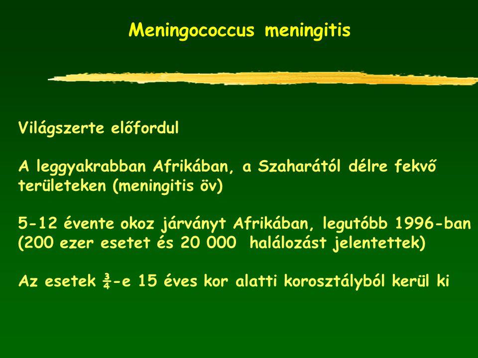 Meningococcus meningitis Világszerte előfordul A leggyakrabban Afrikában, a Szaharától délre fekvő területeken (meningitis öv) 5-12 évente okoz járván