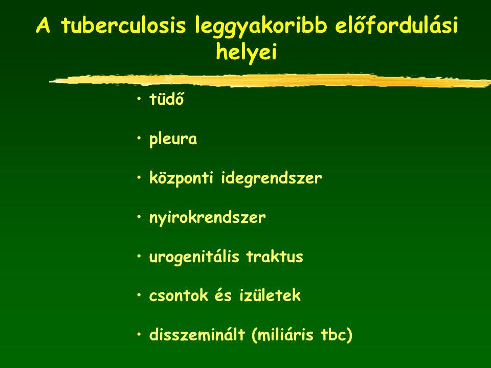A tuberculosis leggyakoribb előfordulási helyei tüdő pleura központi idegrendszer nyirokrendszer urogenitális traktus csontok és izületek disszeminált
