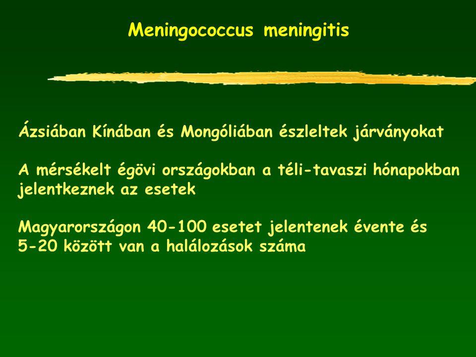 Meningococcus meningitis Ázsiában Kínában és Mongóliában észleltek járványokat A mérsékelt égövi országokban a téli-tavaszi hónapokban jelentkeznek az