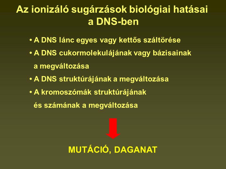 A DNS lánc egyes vagy kettős száltörése A DNS cukormolekulájának vagy bázisainak a megváltozása A DNS struktúrájának a megváltozása A kromoszómák struktúrájának és számának a megváltozása Az ionizáló sugárzások biológiai hatásai a DNS-ben MUTÁCIÓ, DAGANAT