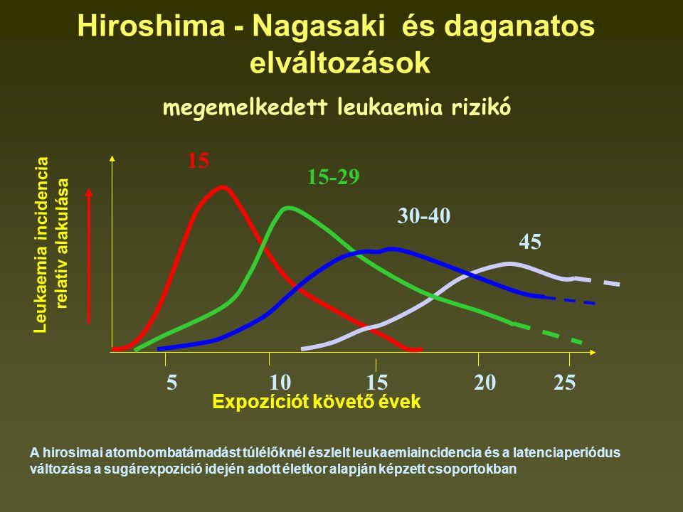 A hirosimai atombombatámadást túlélőknél észlelt leukaemiaincidencia és a latenciaperiódus változása a sugárexpozició idején adott életkor alapján képzett csoportokban 15 15-29 30-40 45 5 10 15 20 25 Leukaemia incidencia relativ alakulása Expozíciót követő évek Hiroshima - Nagasaki és daganatos elváltozások megemelkedett leukaemia rizikó