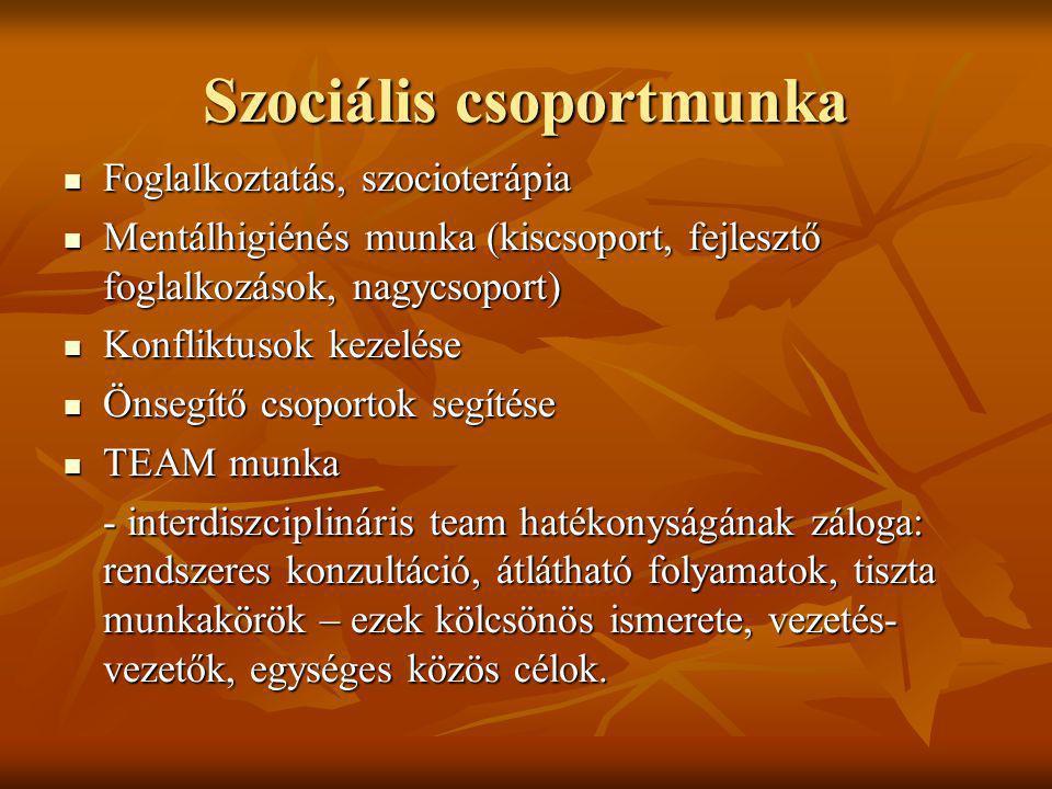 Szociális csoportmunka Foglalkoztatás, szocioterápia Foglalkoztatás, szocioterápia Mentálhigiénés munka (kiscsoport, fejlesztő foglalkozások, nagycsop