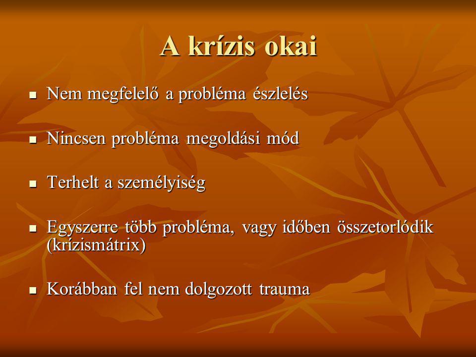 A krízis okai Nem megfelelő a probléma észlelés Nem megfelelő a probléma észlelés Nincsen probléma megoldási mód Nincsen probléma megoldási mód Terhel