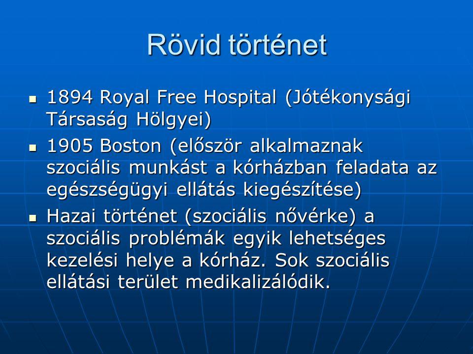 Megközelítések, modellek Biomedicinális (A kórházban gyógyítani kell.