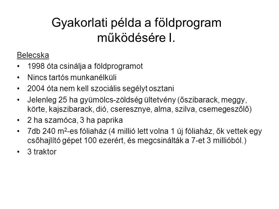 Gyakorlati példa a földprogram működésére I. Belecska 1998 óta csinálja a földprogramot Nincs tartós munkanélküli 2004 óta nem kell szociális segélyt