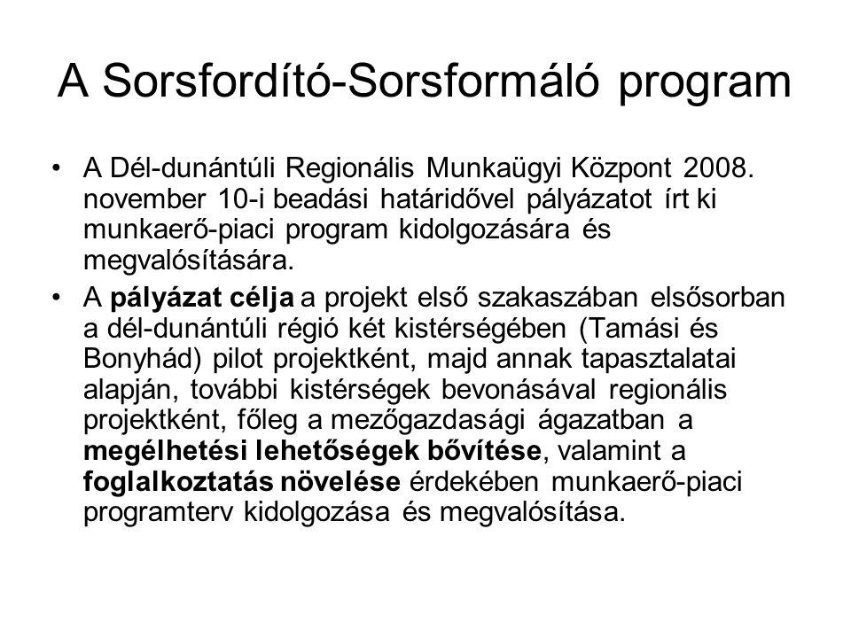 A Sorsfordító-Sorsformáló program A Dél-dunántúli Regionális Munkaügyi Központ 2008. november 10-i beadási határidővel pályázatot írt ki munkaerő-piac