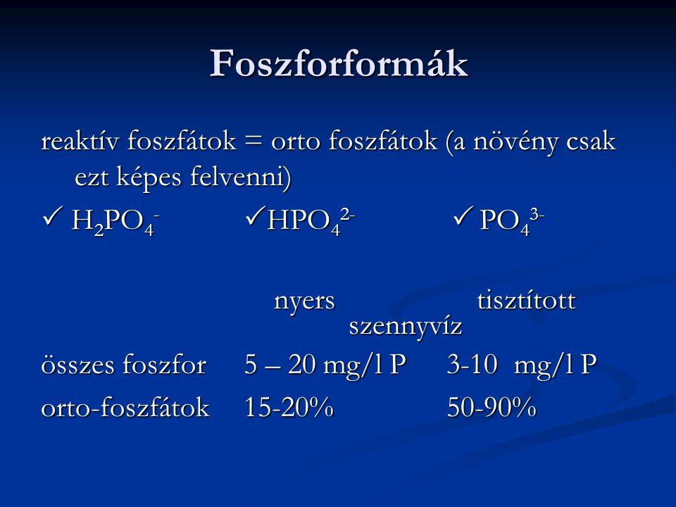 Foszforformák reaktív foszfátok = orto foszfátok (a növény csak ezt képes felvenni)  H 2 PO 4 -  HPO 4 2-  PO 4 3- nyers tisztított nyers tisztítot