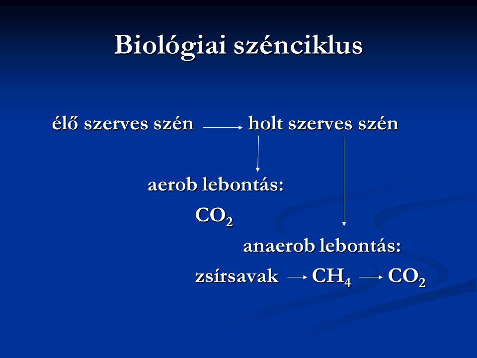 Biológiai szénciklus élő szerves szén holt szerves szén aerob lebontás: CO 2 anaerob lebontás: zsírsavak CH 4 CO 2