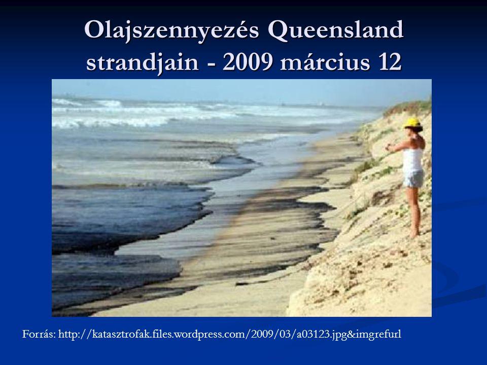 Olajszennyezés Queensland strandjain - 2009 március 12 Forrás: http://katasztrofak.files.wordpress.com/2009/03/a03123.jpg&imgrefurl