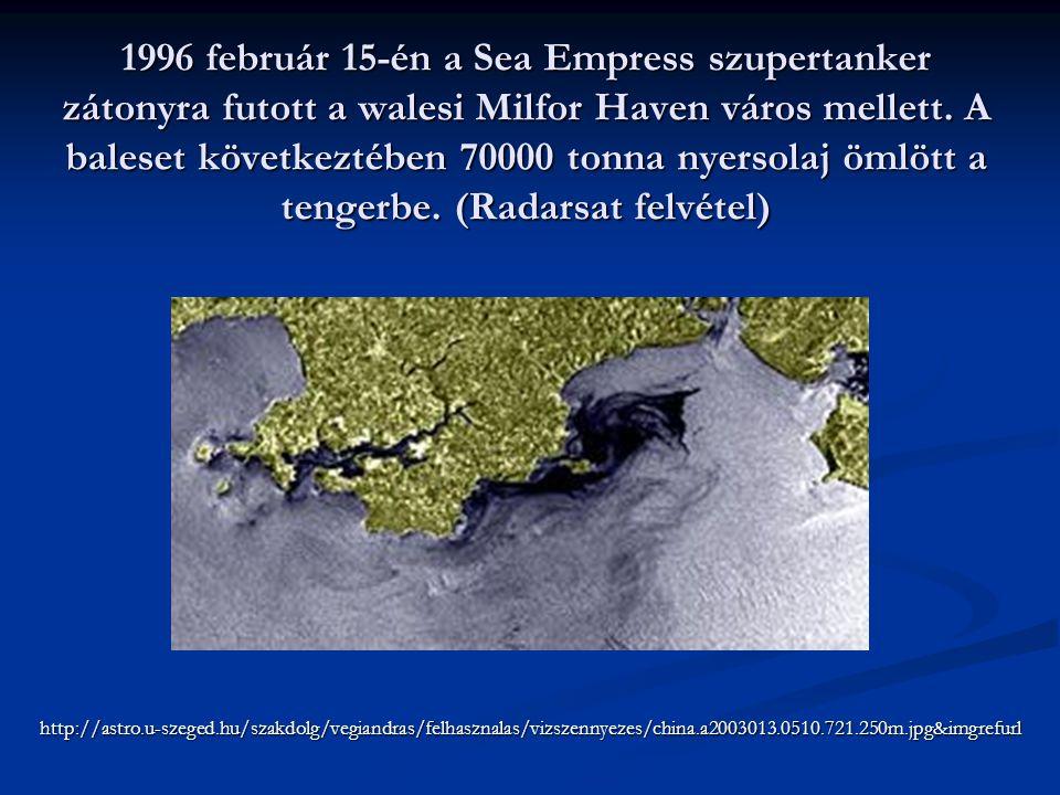 1996 február 15-én a Sea Empress szupertanker zátonyra futott a walesi Milfor Haven város mellett. A baleset következtében 70000 tonna nyersolaj ömlöt