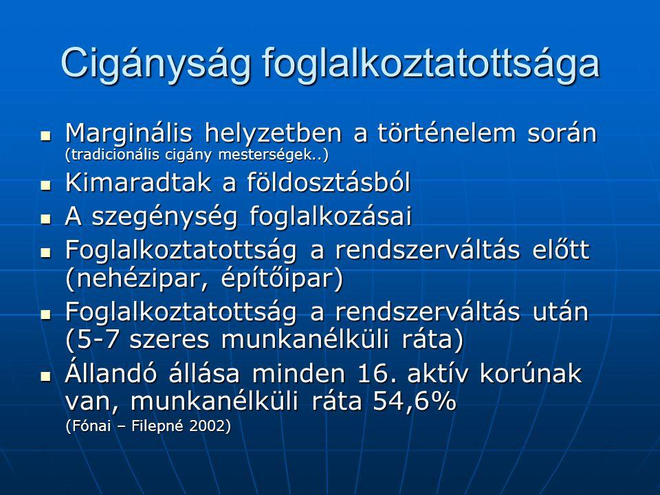 Cigányság foglalkoztatottsága Marginális helyzetben a történelem során (tradicionális cigány mesterségek..) Marginális helyzetben a történelem során (