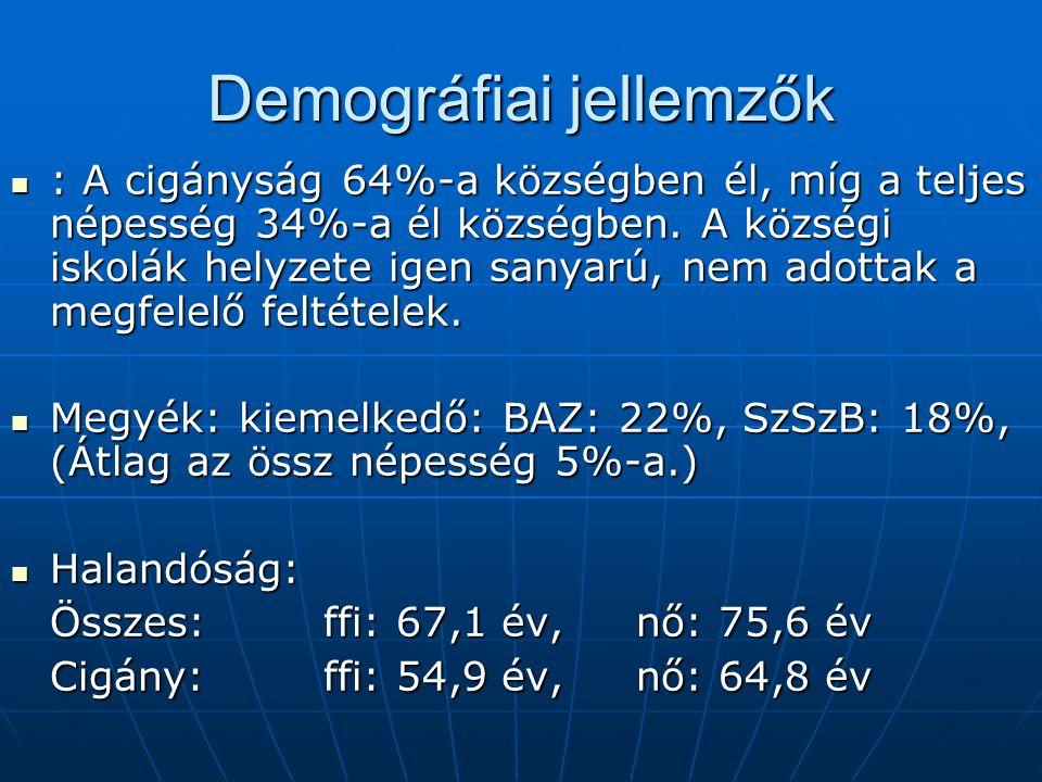 Demográfiai jellemzők : A cigányság 64%-a községben él, míg a teljes népesség 34%-a él községben. A községi iskolák helyzete igen sanyarú, nem adottak