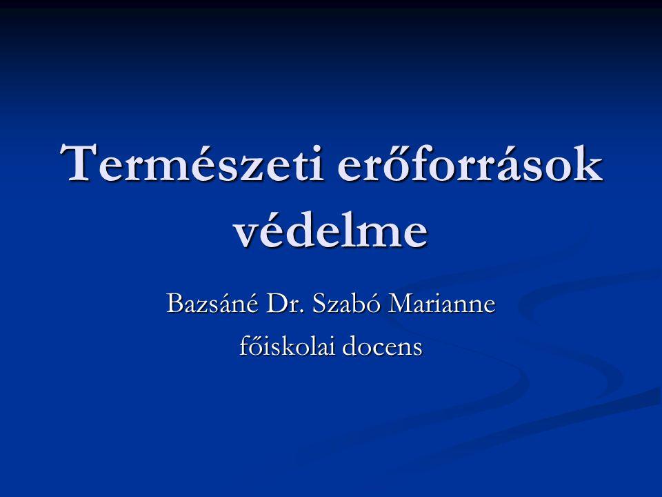 Természeti erőforrások védelme Bazsáné Dr. Szabó Marianne főiskolai docens