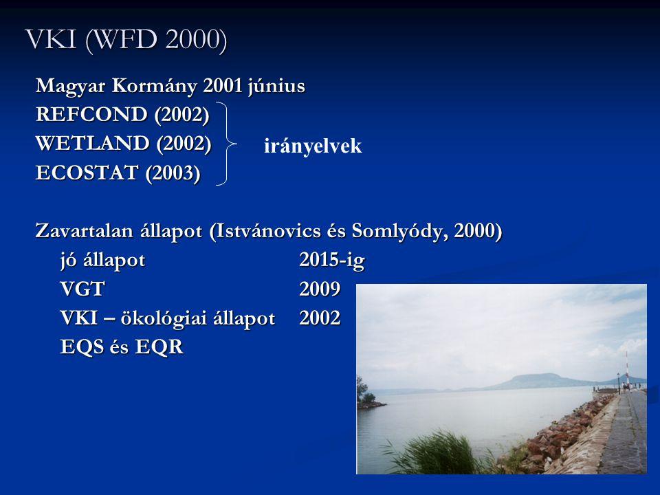 VKI (WFD 2000) Magyar Kormány 2001 június REFCOND (2002) WETLAND (2002) ECOSTAT (2003) Zavartalan állapot (Istvánovics és Somlyódy, 2000) jó állapot 2
