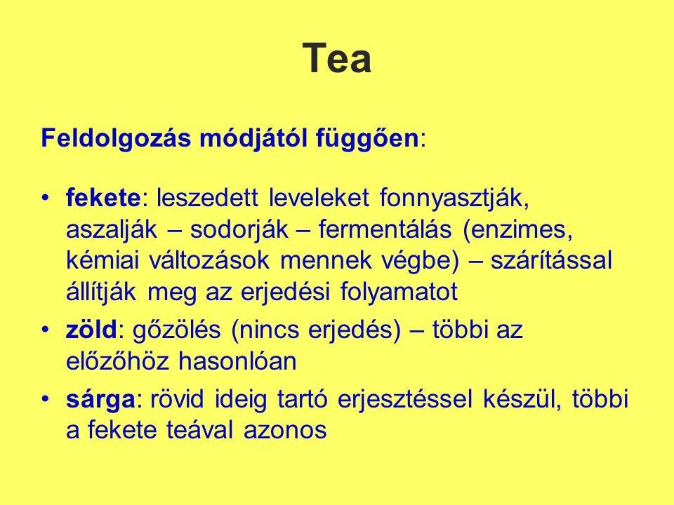 Tea Feldolgozás módjától függően: fekete: leszedett leveleket fonnyasztják, aszalják – sodorják – fermentálás (enzimes, kémiai változások mennek végbe) – szárítással állítják meg az erjedési folyamatot zöld: gőzölés (nincs erjedés) – többi az előzőhöz hasonlóan sárga: rövid ideig tartó erjesztéssel készül, többi a fekete teával azonos