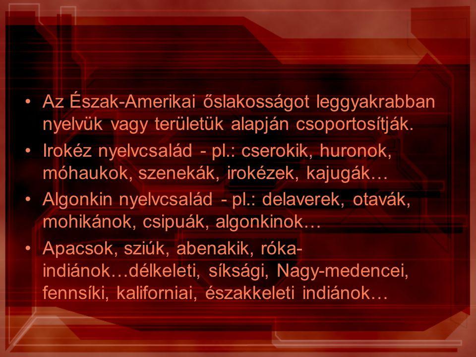 Az Észak-Amerikai őslakosságot leggyakrabban nyelvük vagy területük alapján csoportosítják. Irokéz nyelvcsalád - pl.: cserokik, huronok, móhaukok, sze