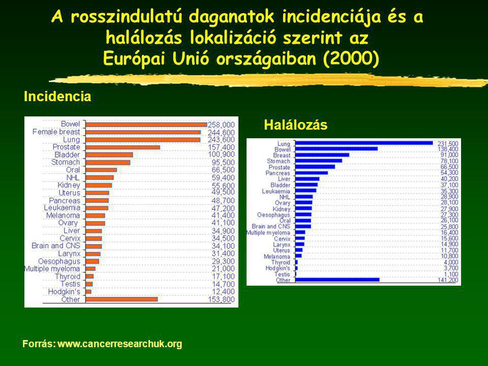 A rosszindulatú daganatok incidenciája és a halálozás lokalizáció szerint az Európai Unió országaiban (2000) Forrás: www.cancerresearchuk.org Incidencia Halálozás