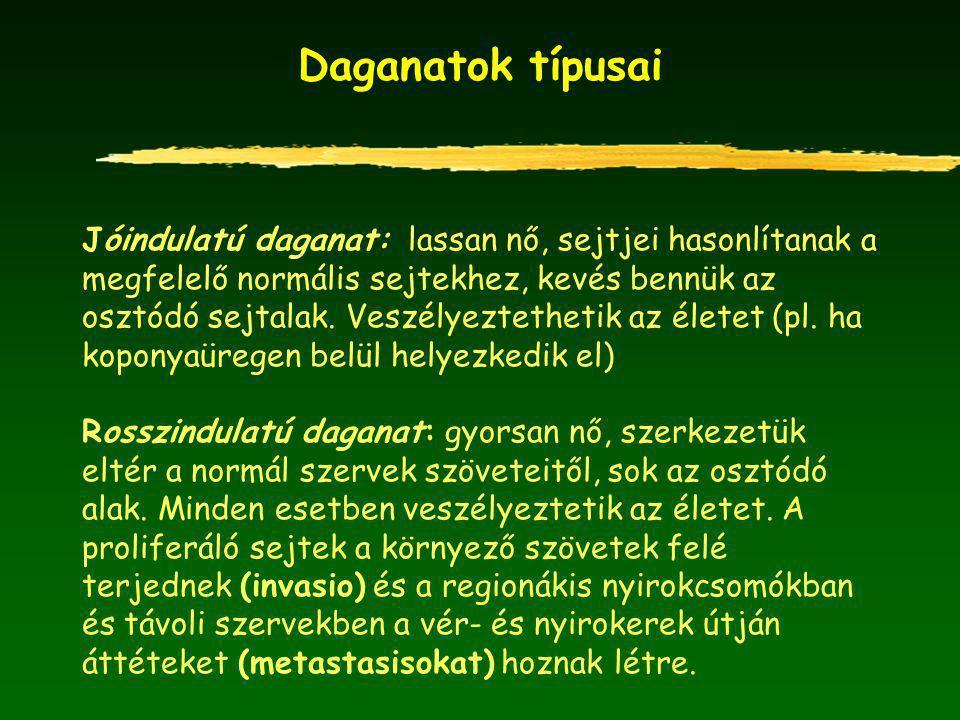 A férfiak daganatos megbetegedése (%) 2000-2003 évben Magyarországon emlő dag.