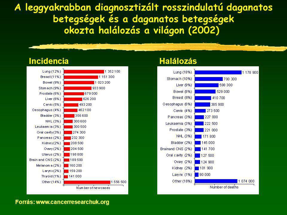 A leggyakrabban diagnosztizált rosszindulatú daganatos betegségek és a daganatos betegségek okozta halálozás a világon (2002) IncidenciaHalálozás Forrás: www.cancerresearchuk.org
