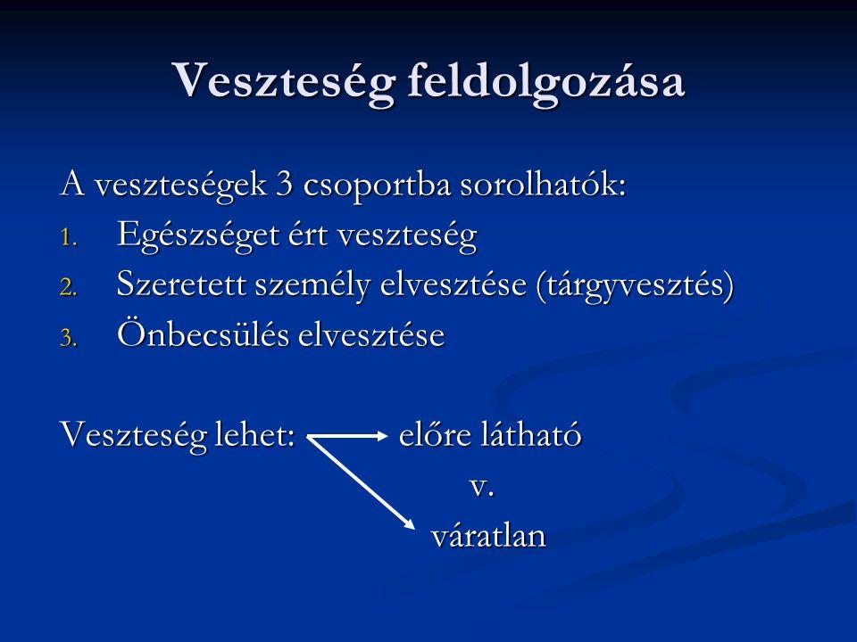 Veszteség feldolgozása A veszteségek 3 csoportba sorolhatók: 1.