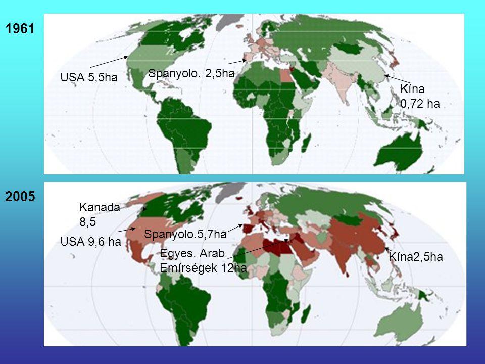 1961 2005 USA 9,6 ha Kína2,5ha Spanyolo.5,7ha USA 5,5ha Egyes. Arab Emírségek 12ha Spanyolo. 2,5ha Kína 0,72 ha Kanada 8,5