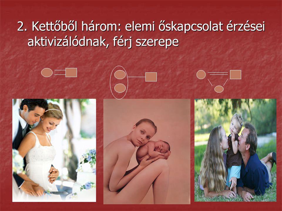 2. Kettőből három: elemi őskapcsolat érzései aktivizálódnak, férj szerepe