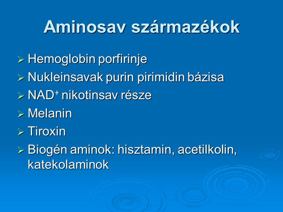 Aminosav származékok  Hemoglobin porfirinje  Nukleinsavak purin pirimidin bázisa  NAD + nikotinsav része  Melanin  Tiroxin  Biogén aminok: hiszt